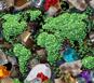 Genox – Working Towards a Better Environment